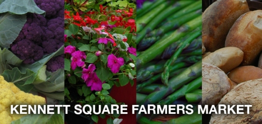 Farmers Market Header (quad)